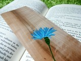 DimDim - Here you find handmade wooden bookmarks.